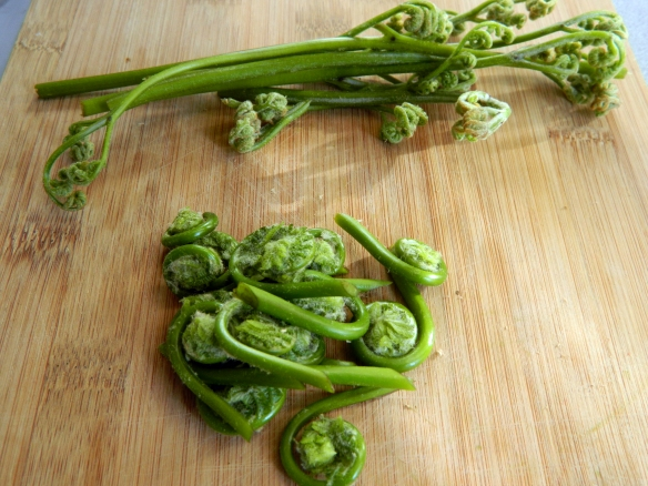 Gnocchi with Fiddlehead Ferns and Ramp Pesto